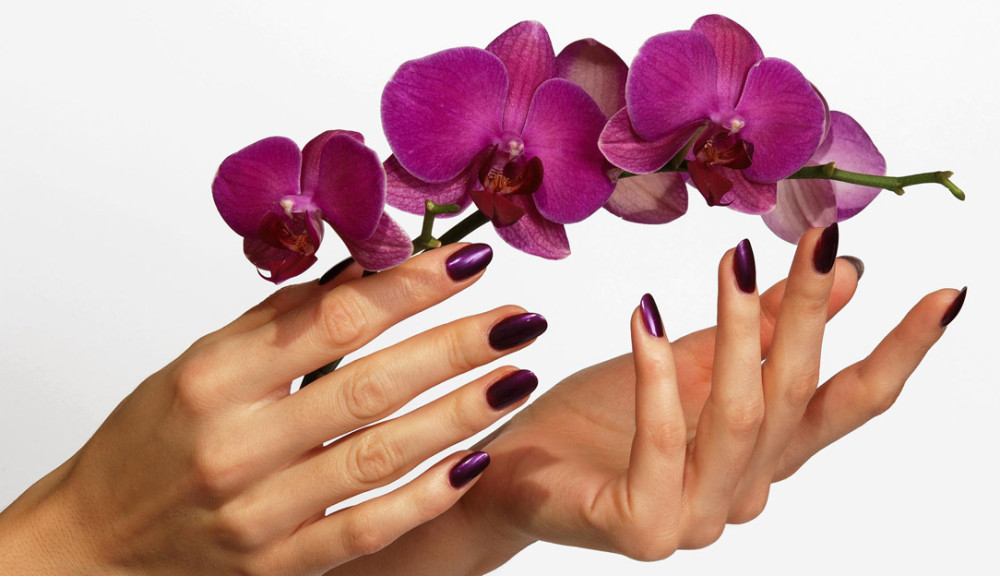 Beautiful hands with purple orchid